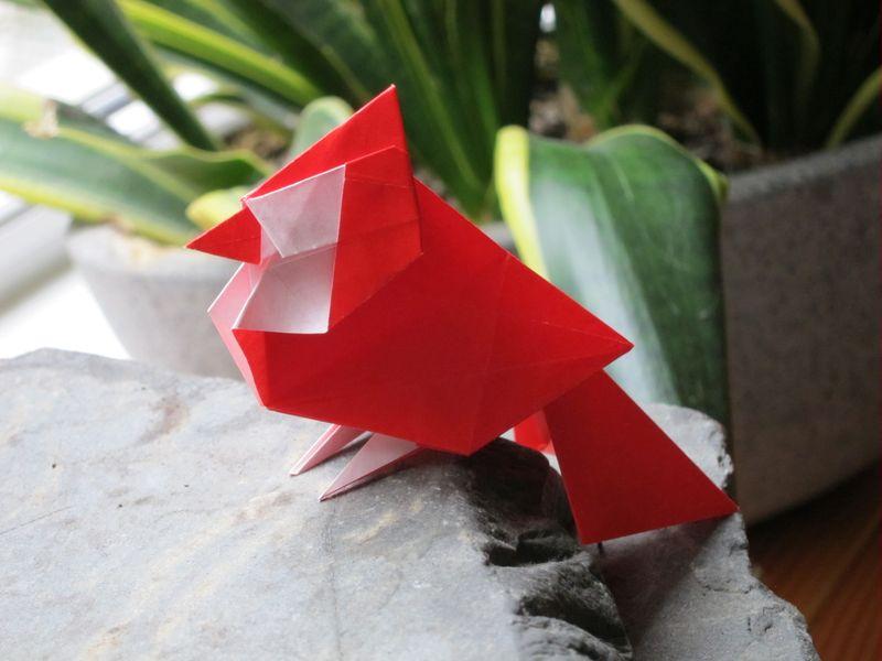 Best Diaz Cardinal - Karabouts