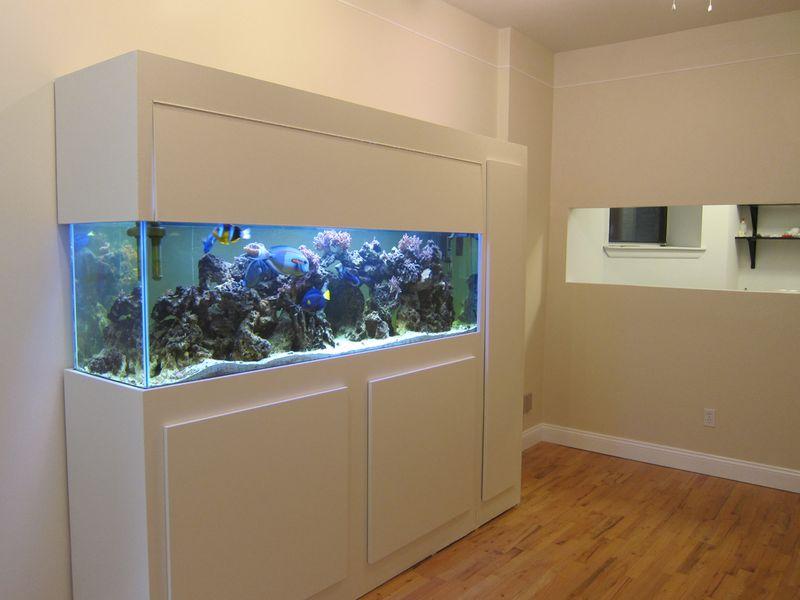 014_Fish tank 03
