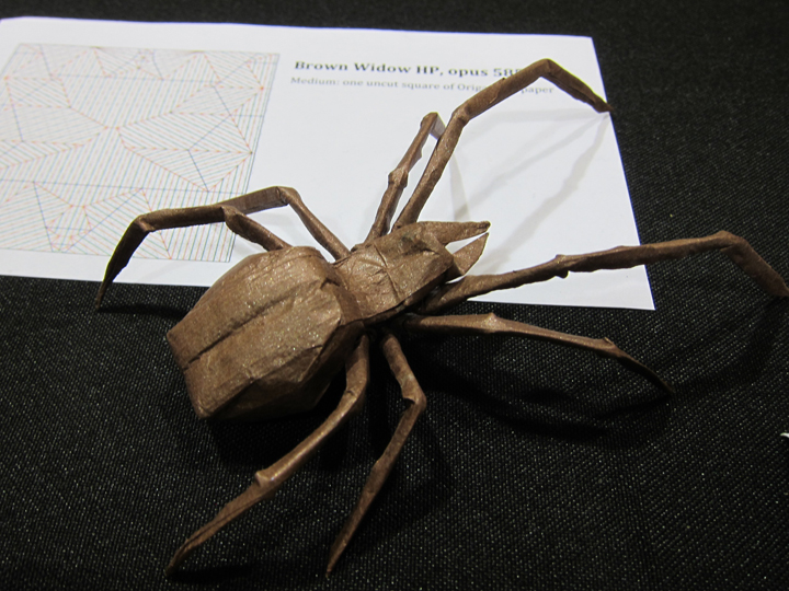 Lang Spider