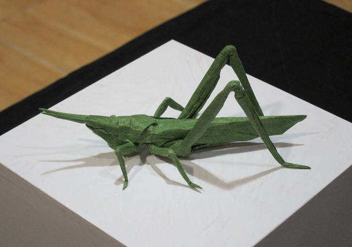 Brian Chan Grasshopper