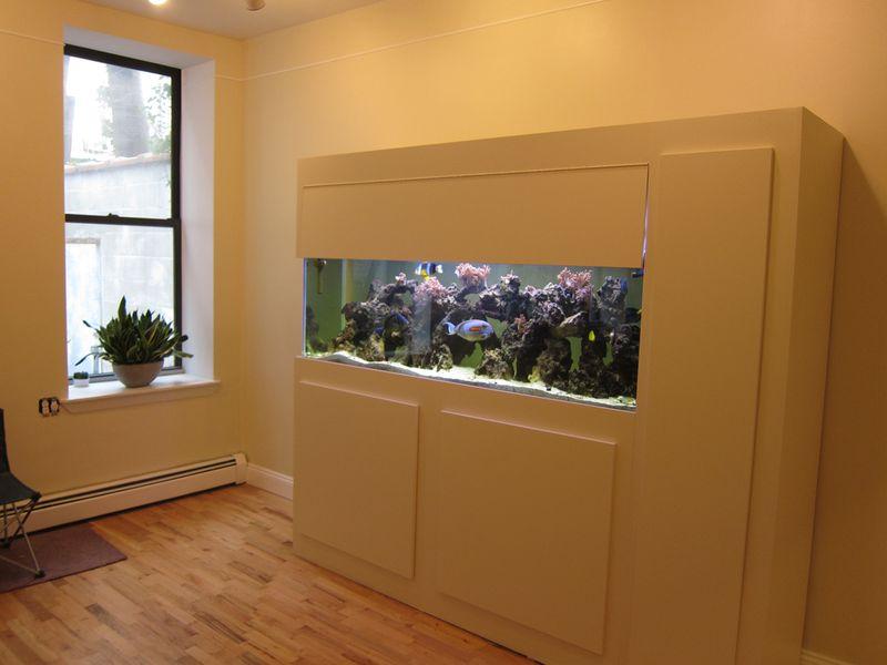 013_fish tank 02